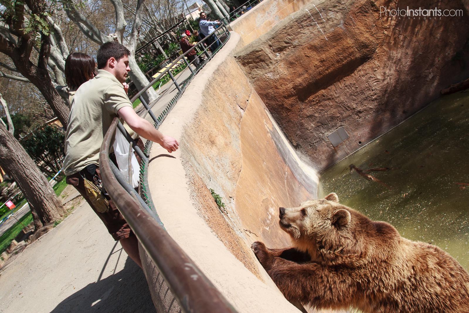 Zoo Barcelona visitando el zoo de barcelona photoinstants