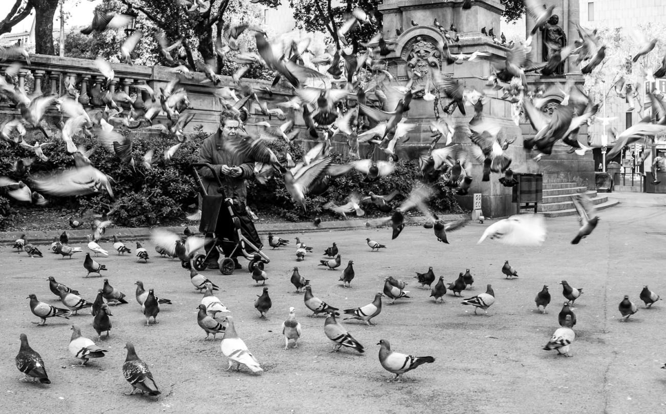 La mujer de las palomas