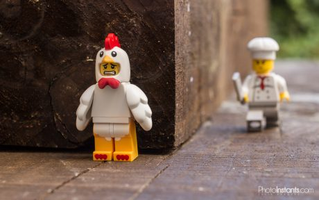 Lego Chicken Run